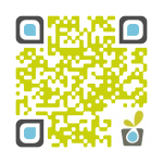 URL QR Code